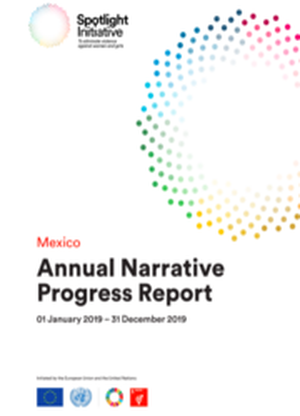 2019 Mexico Annual Narrative Progress Report